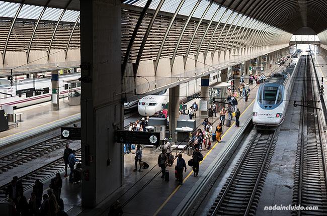 Ave en la estación de Atocha de Madrid (España)