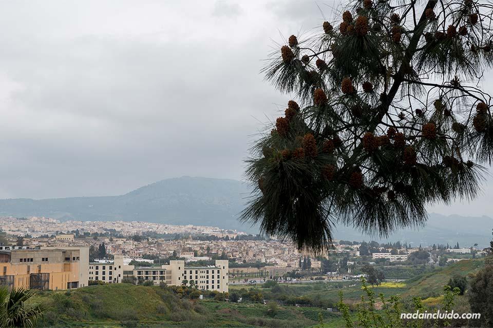 Vistas de Fez desde el Hotel Menzeh Zalagh (Marruecos)