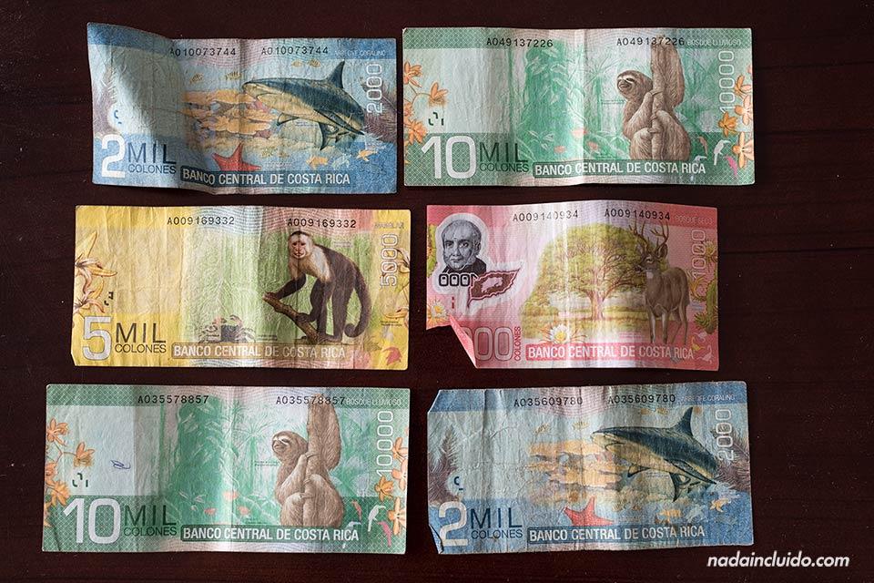 Algunos de los billetes del colón de Costa Rica