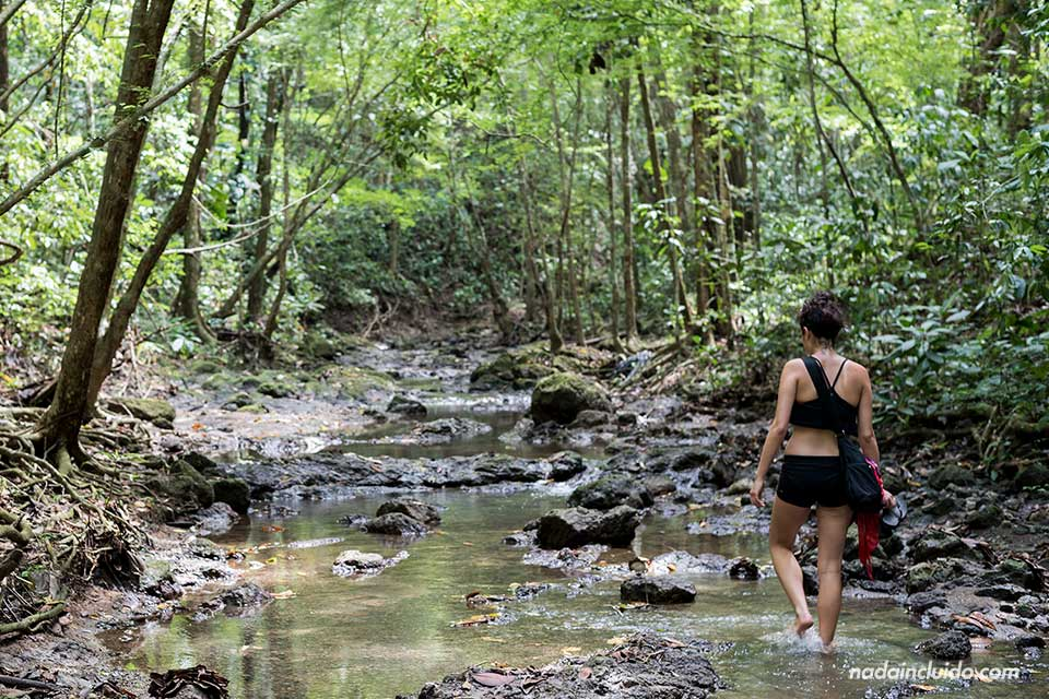 Caminando hacia la cascada secreta de Quepos (Costa Rica)