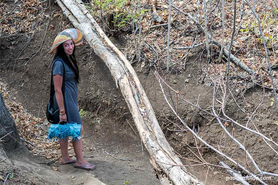 Camino que conecta las playas Danta y Dantita (Costa Rica)