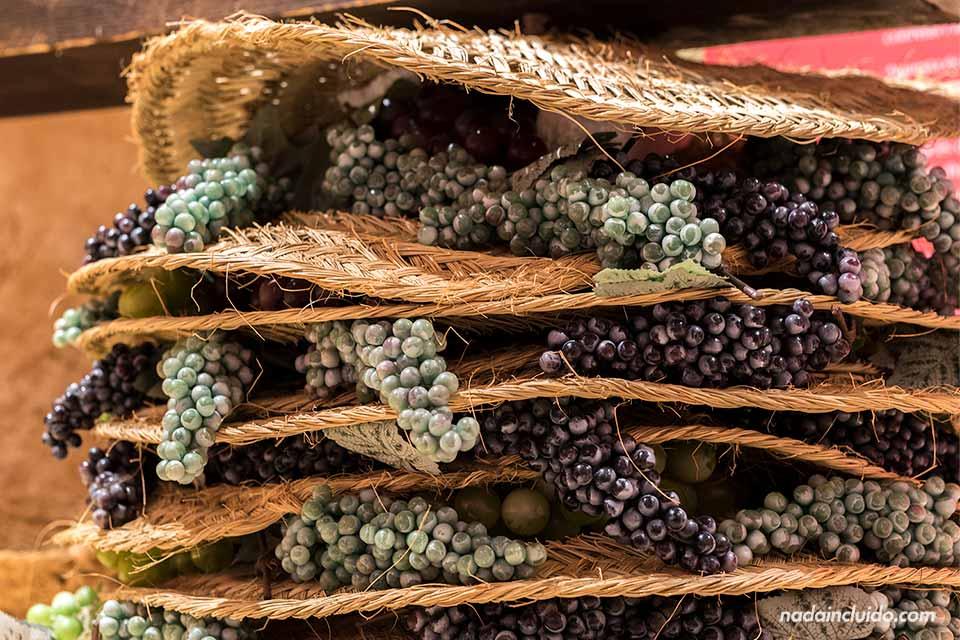 Uvas en el museo del yacimiento Font de la Canya (Barcelona)
