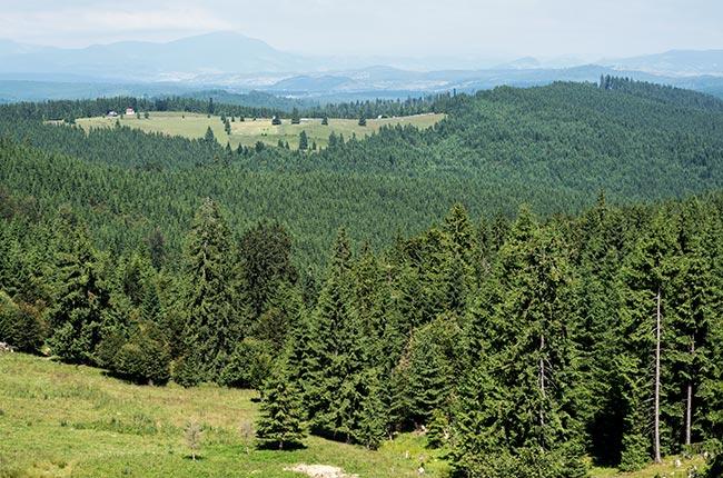 1b-rumania-norte-paisajes