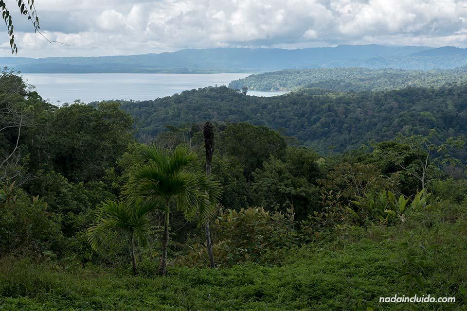 Mirador en Bahía Golfito (Costa Rica)