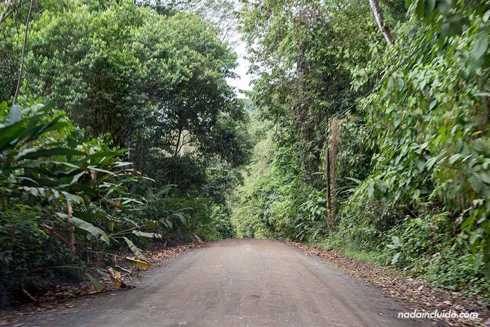 Tramo de la carretera hacia Drake (Costa Rica)
