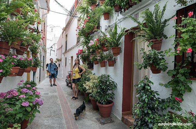 Calle con muchas flores en Casarabonela (Málaga)