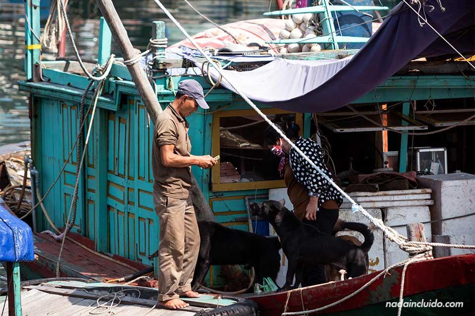 Vietnamitas en un pueblo flotante de la Bahía de Lan Ha (Vietnam)