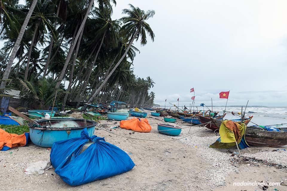 Barcos de pesca en las playas de Mui Ne (Vietnam)