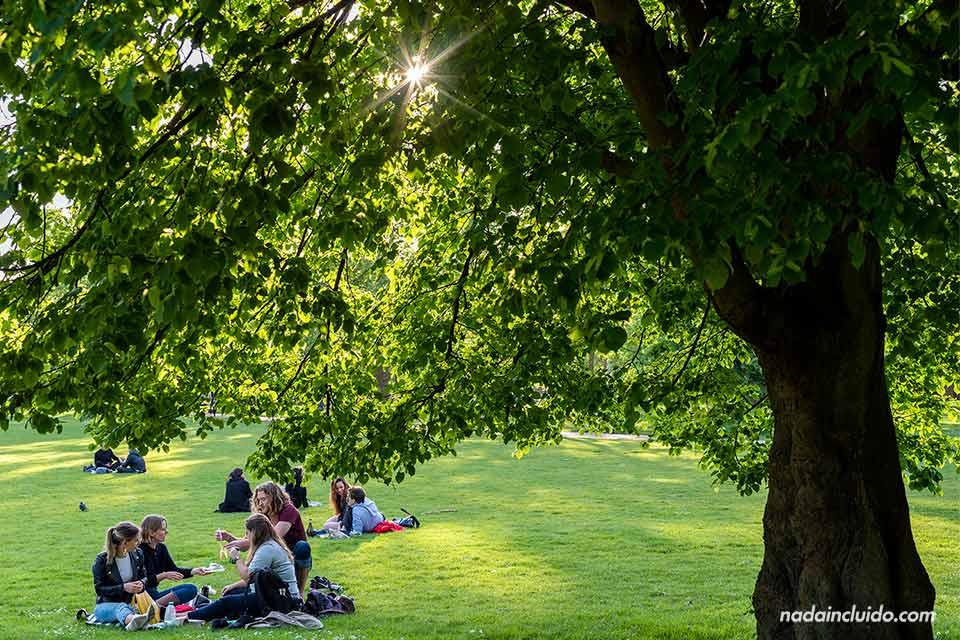 En un parque de Londres al atardecer (Inglaterra)