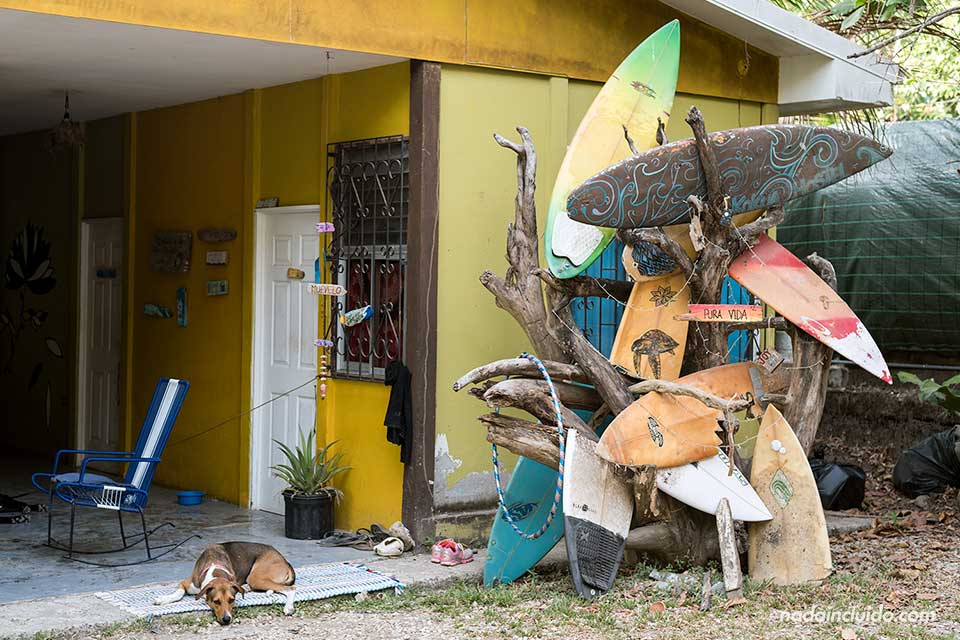 Entrada del Hostel Kokua, en Santa Teresa (Costa Rica)