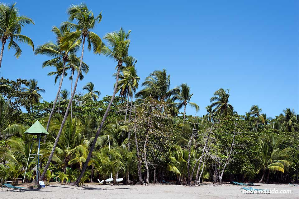 Playa de Tambor junto al Complejo de los Delfines en Costa Rica