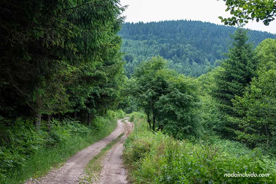 Senderos en Zelenkovac (Bosnia)