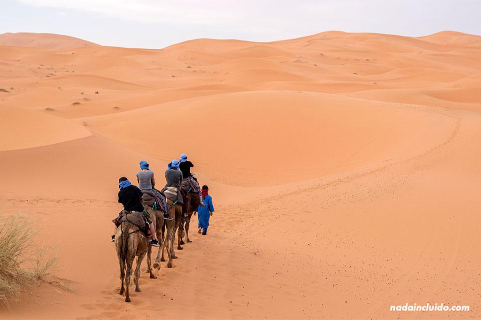Tour en camello por el desierto del Sáhara (Marruecos)