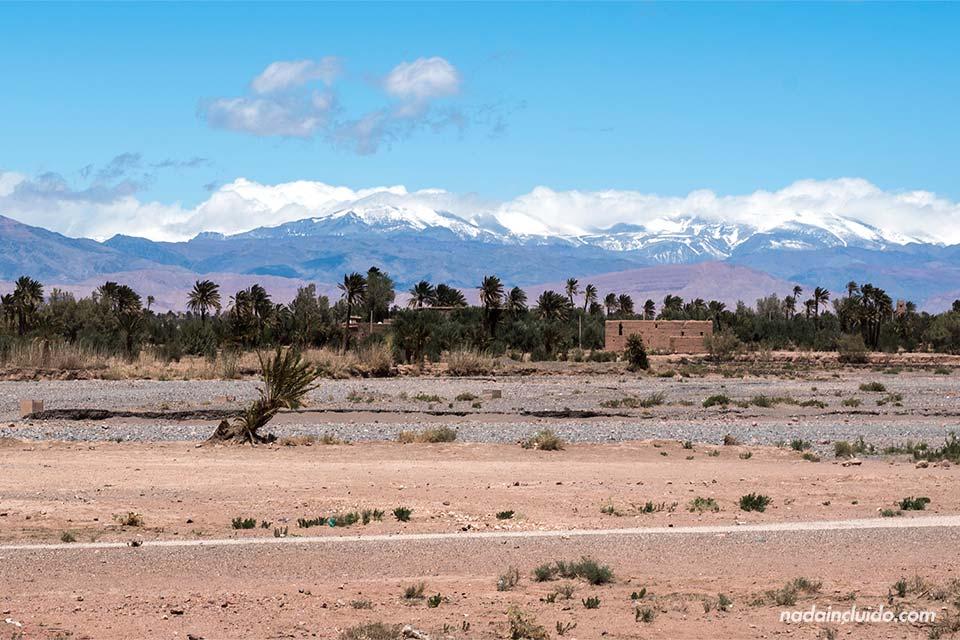 Paisaje en Skoura (Marruecos)
