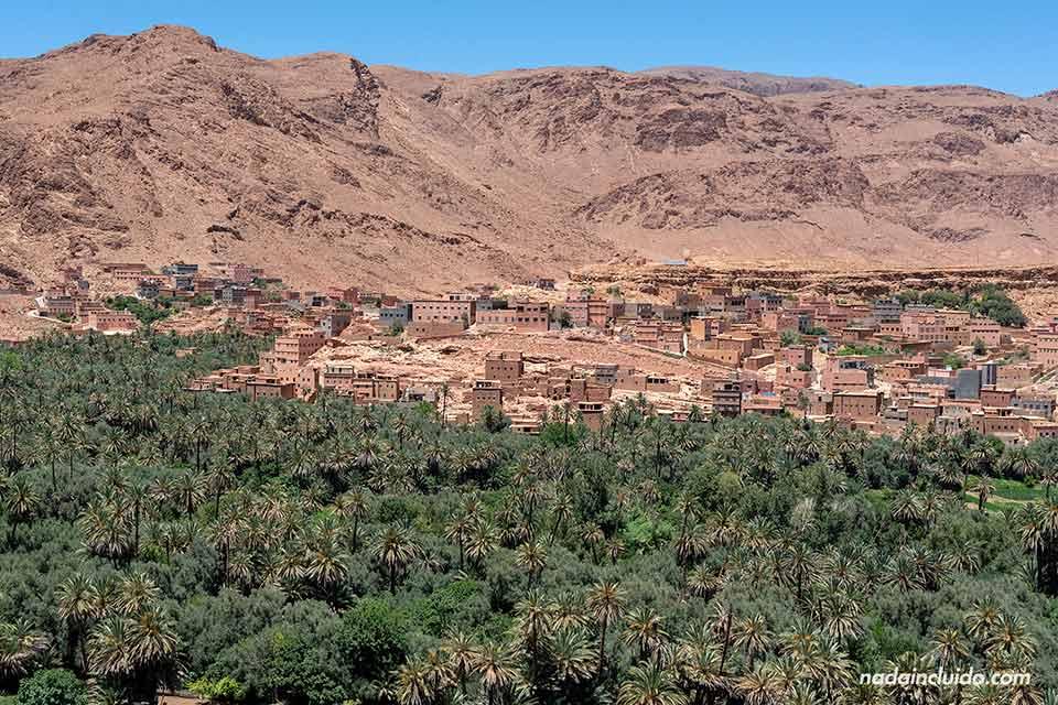 Vistas del palmeral de Tinghir desde un mirador (Marruecos)