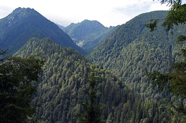 Vista de los Montes Cárpatos desde la carretera Transfagarasan (Rumanía)