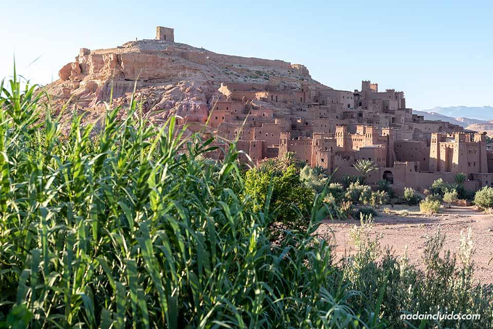 Vistas de Ait Ben Haddou entre las hojas de una planta (Marruecos)