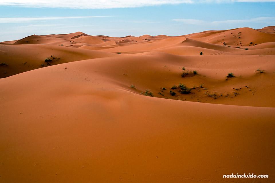 Vista del desierto del Sáhara (Marruecos)