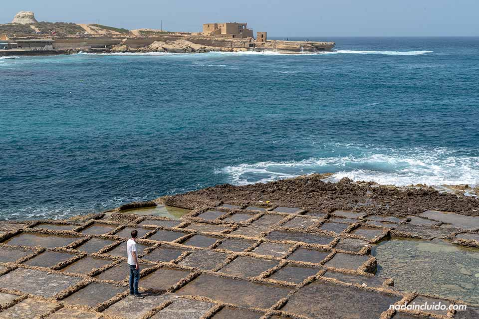 En las salinas de piedra de Marsalforn (Gozo, Malta)