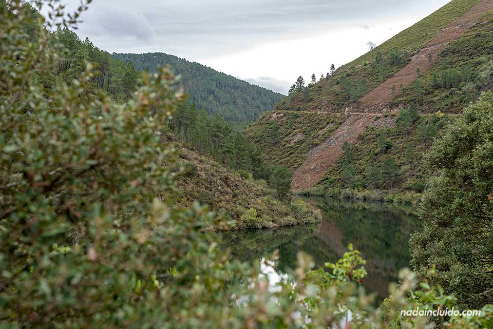 Río Bibey entre matorrales en la zona de Ribeira Sacra (Galicia)
