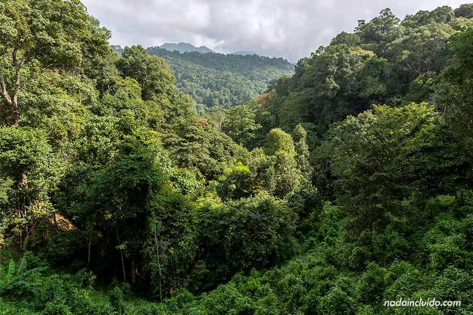 Vistas del parque nacional Khun Chae (Tailandia)