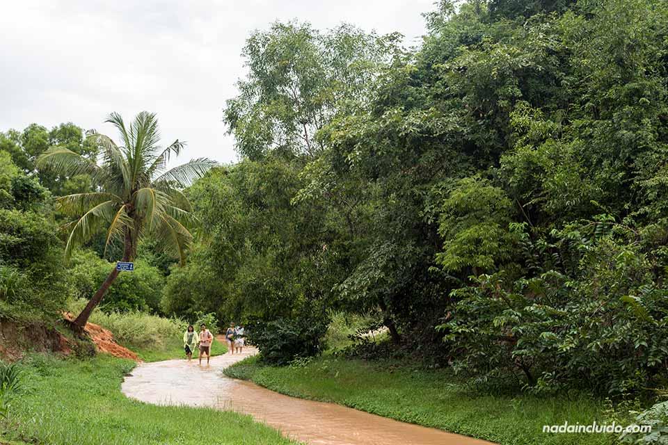 Fairy stream de Mui Ne, al sur de Vietnam