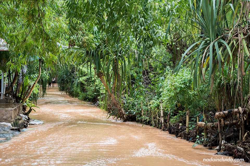 Fairy Stream de Mui Ne (Vietnam)