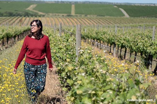 Paseando por unos viñedos del Alentejo (Portugal)