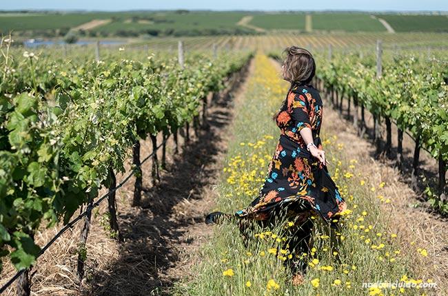 Fotos en unos viñedos del Alentejo (Portugal)
