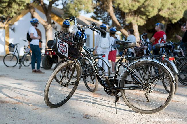 Bicicletas Valdés en los pinares de Chipiona (Cádiz)