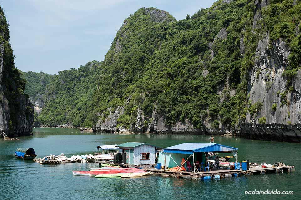 Tienda de kayaks en la Bahía de Lan Ha (Vietnam)