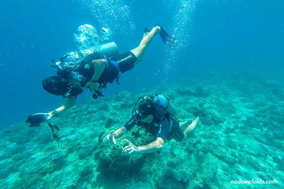 Blogueros buceando en islas Gili (Indonesia)