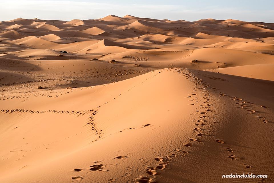 El desierto del Sáhara (Marruecos)