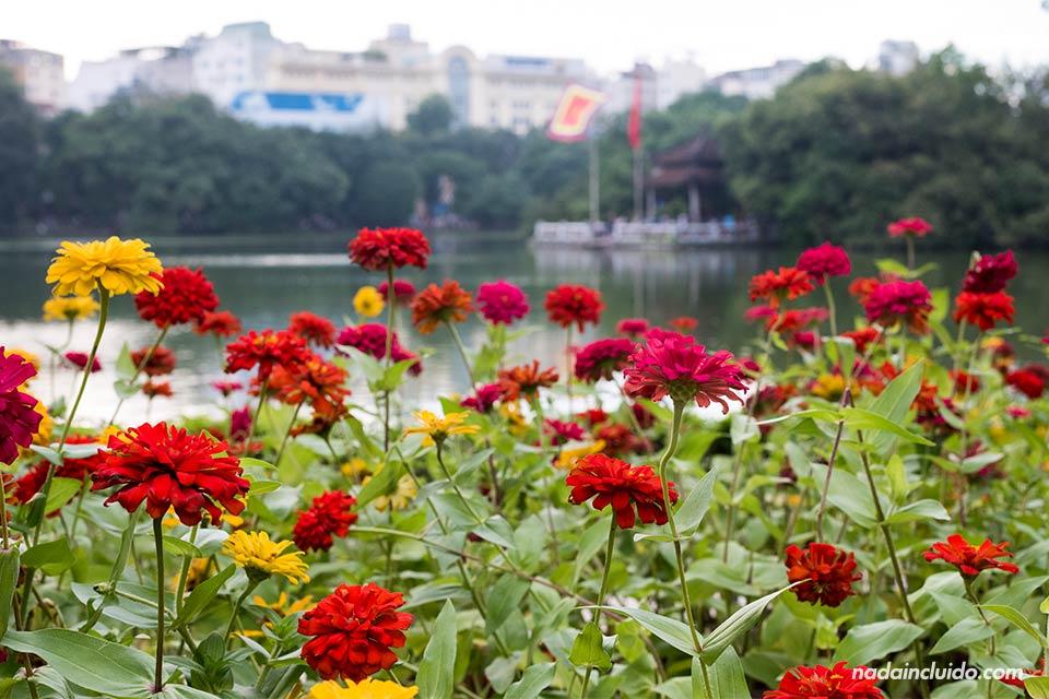 Flores en el Lago Hoan Kiem de Hanoi (Vietnam)