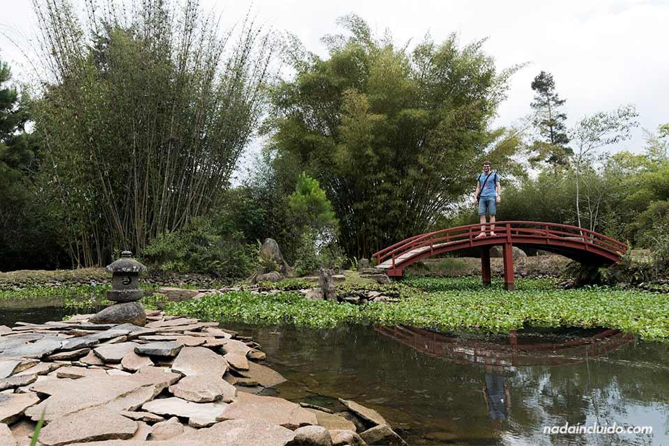 Puente japonés en el Jardín Botánico Lankester (Cartago, Costa Rica)