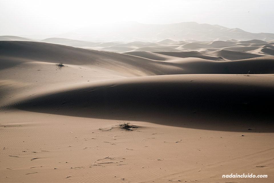 Primeras luces del día sobre el desierto del Sáhara (Marruecos)