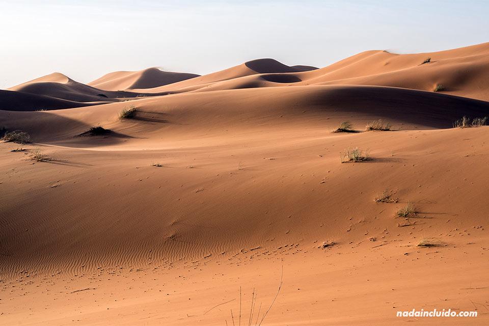 Luces de mañana en el desierto del Sáhara (Marruecos)