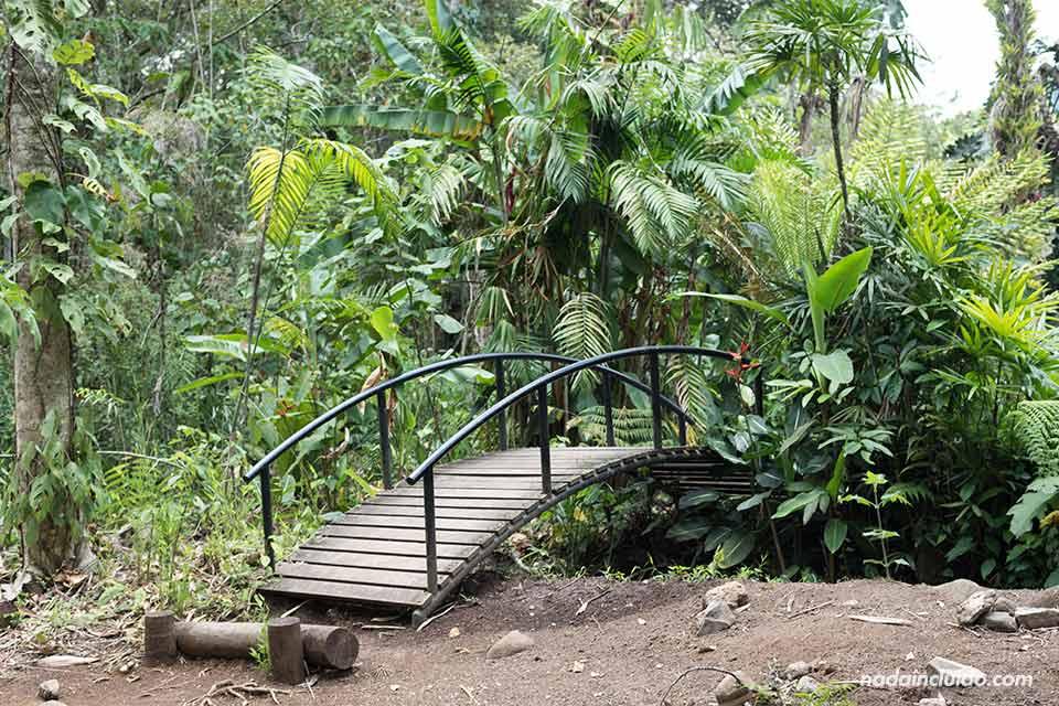 Puente en el Jardín Botánico Lankester (Cartago, Costa Rica)
