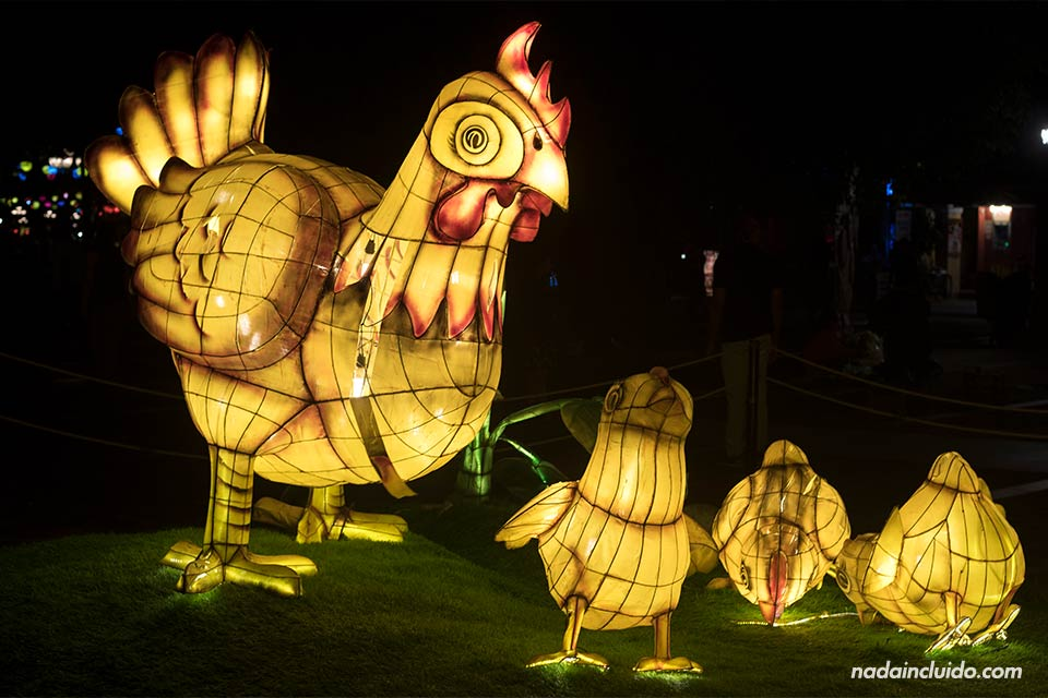 Farolillos con forma de gallina en Hanoi (Vietnam)