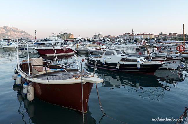 Muchas barcas amarradas en el puerto de Budva (Montenegro)