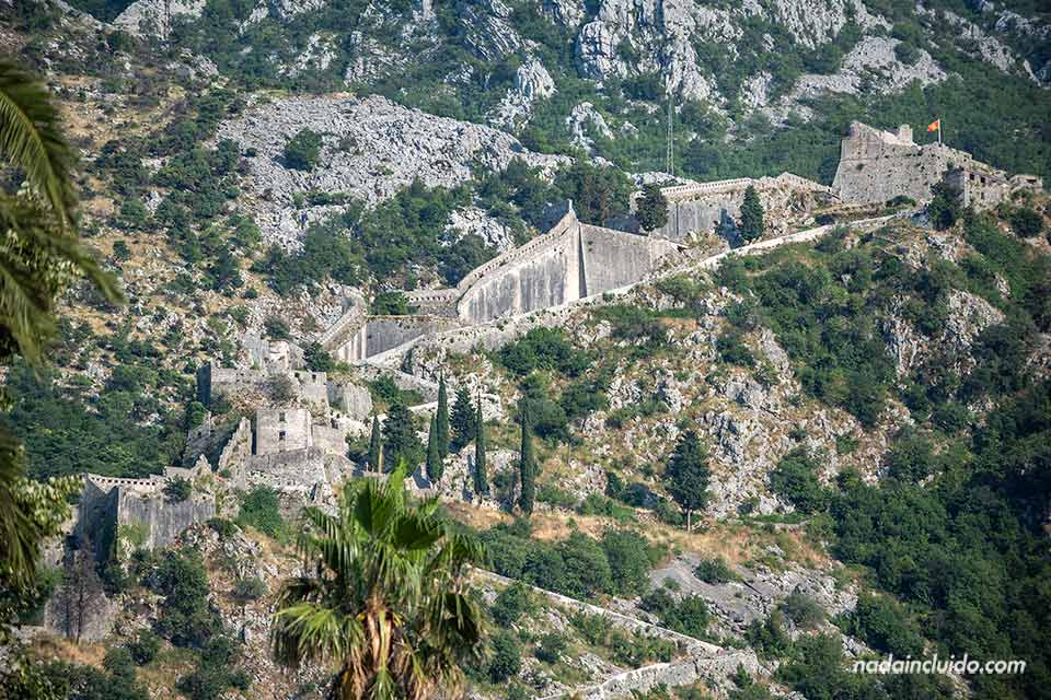 Muralla de Kotor (Montenegro)