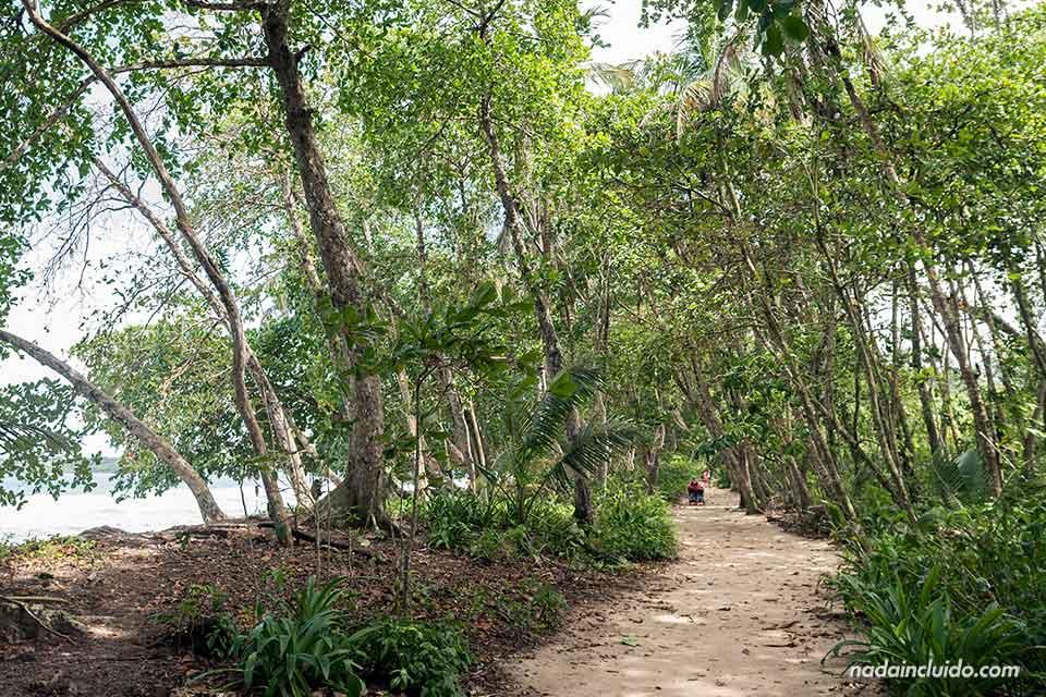 Sendero en Parque Nacional Cahuita (Costa Rica)