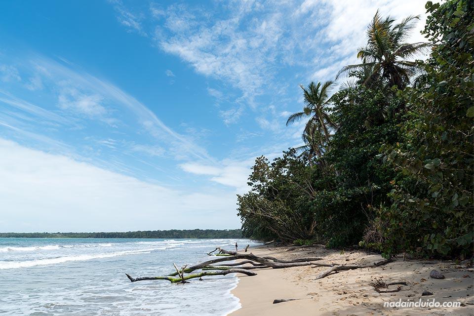 Playa en el Parque Nacional Cahuita (Costa Rica)