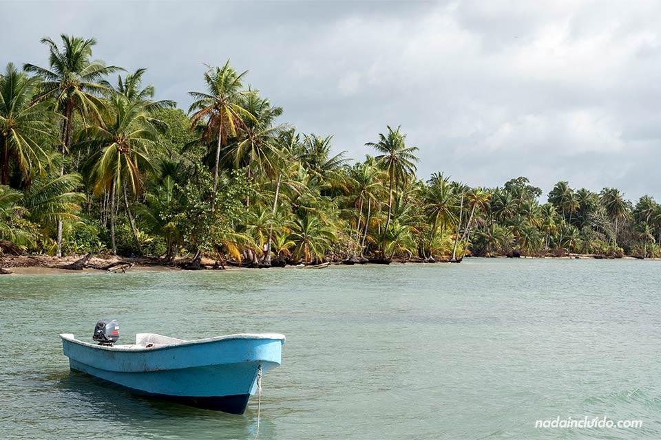 Barca en Boca del Drago (isla Colón, Panamá)
