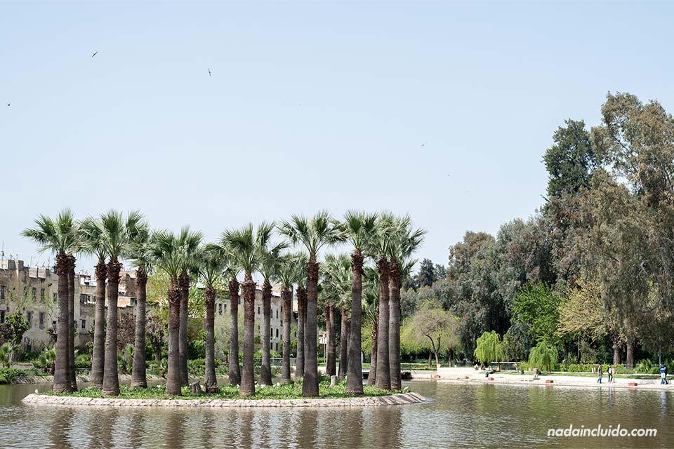 Estanque en el Jardín Jnan Sbil de Fez (Marruecos)