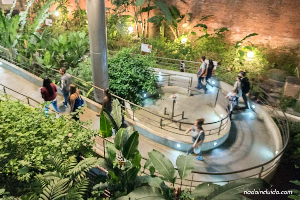 Mariposario en el museo nacional de Costa Rica, San José