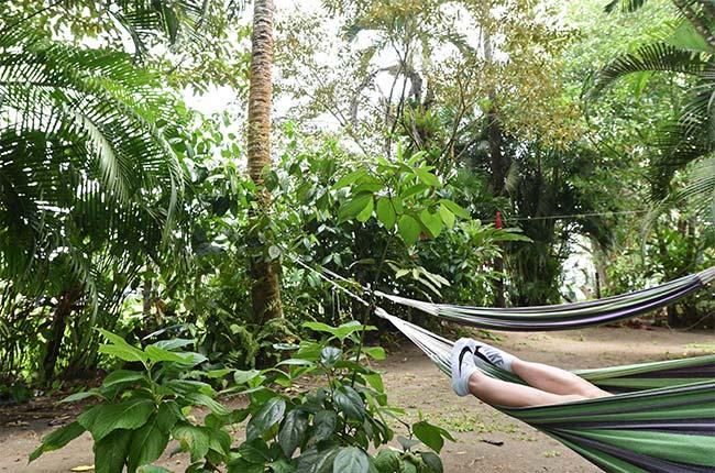 Hamaca en el Hostal Aracari Garden en Tortuguero (Costa Rica)