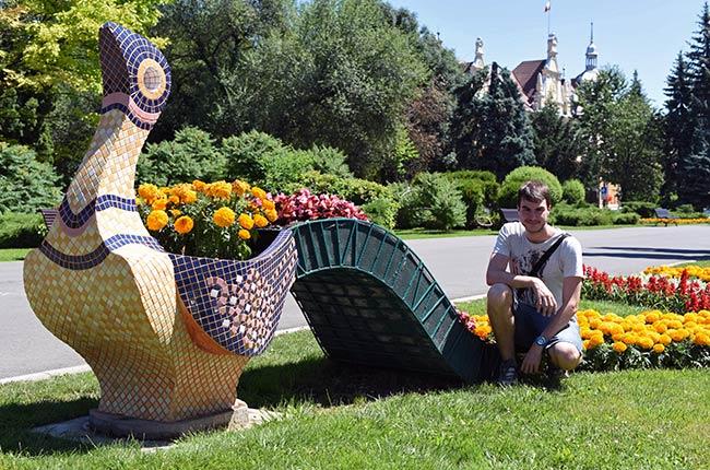 Maceta en el Parcul Nicolae Titulescu, Brasov (Rumanía)