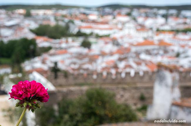 Vistas de Estremoz desde lo alto (Alentejo, Portugal)