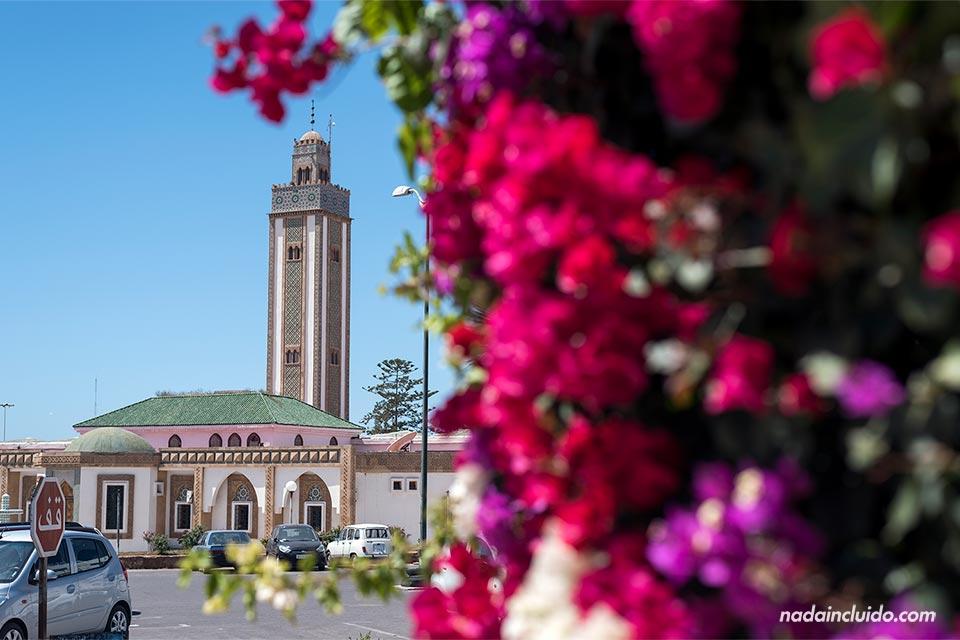 Flores junto a la mezquita Loubnane de Agadir (Marruecos)